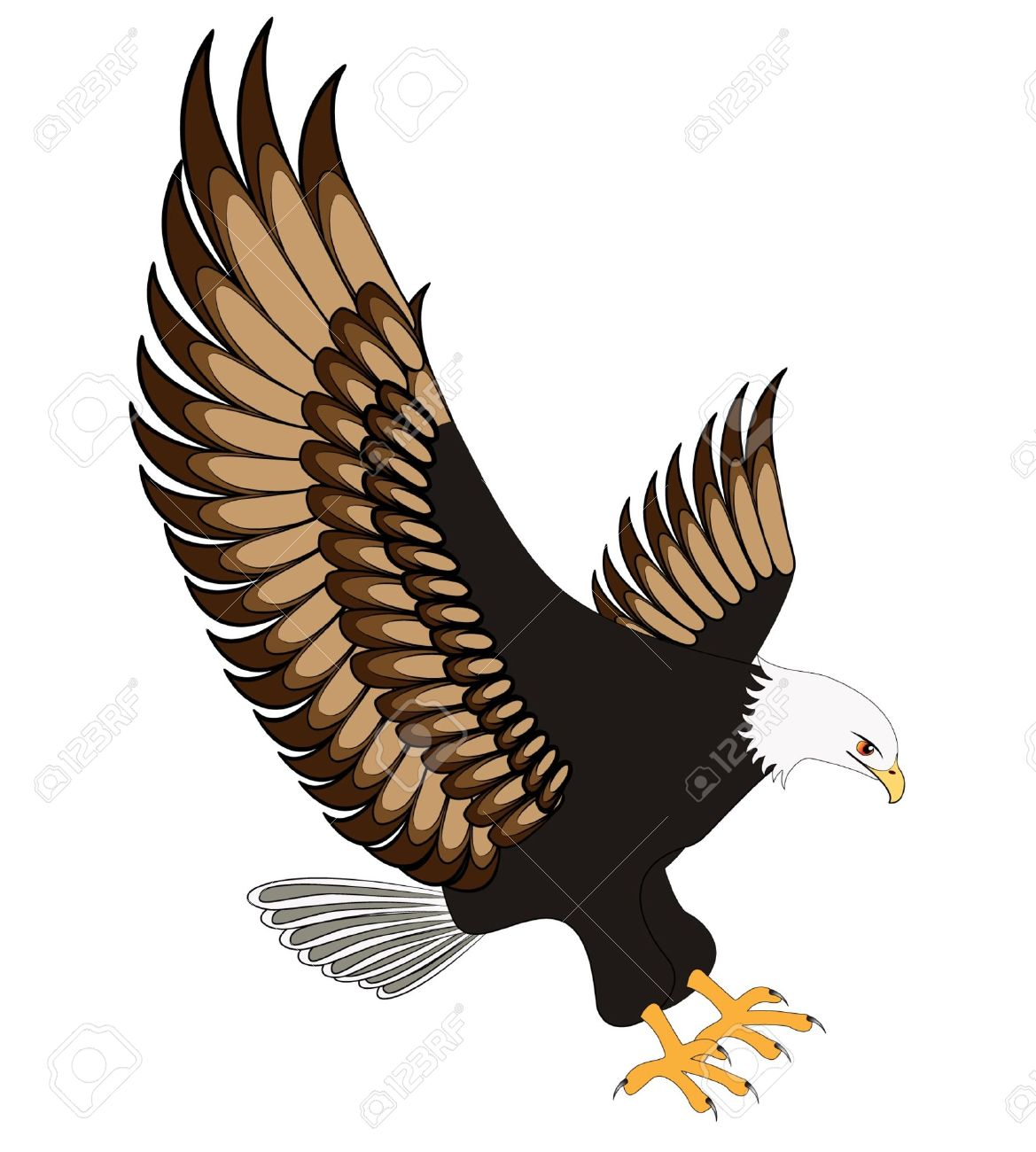 Illustration flying eagle insulated on white background stock vector 10181403