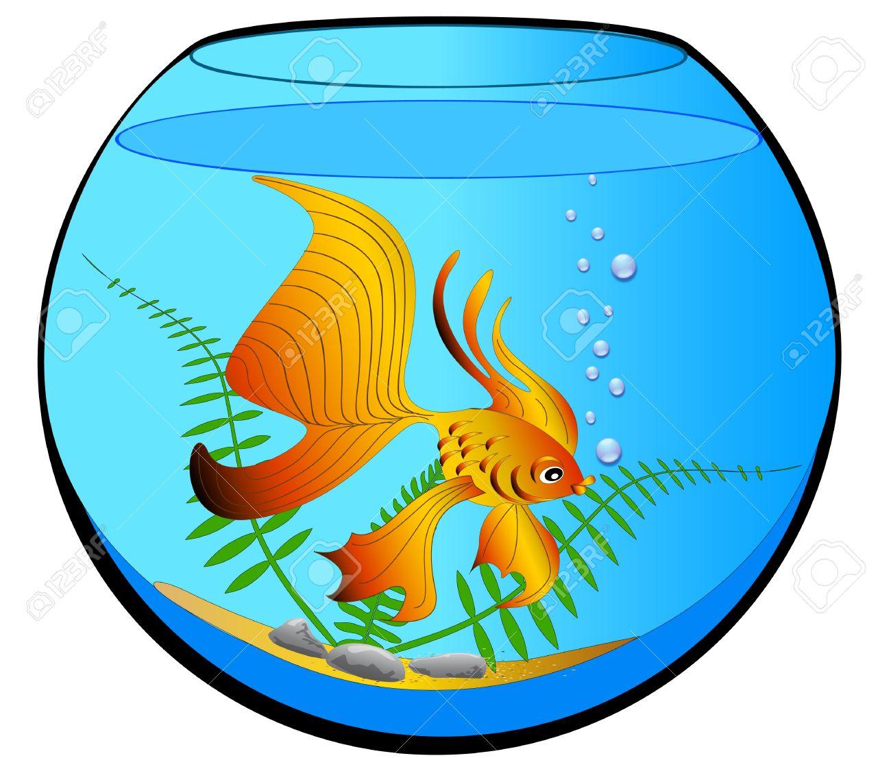 Freshwater fish clipart - Tropical Fresh Water Fish Illustration Aquarium With Gold Fish And Algae Illustration