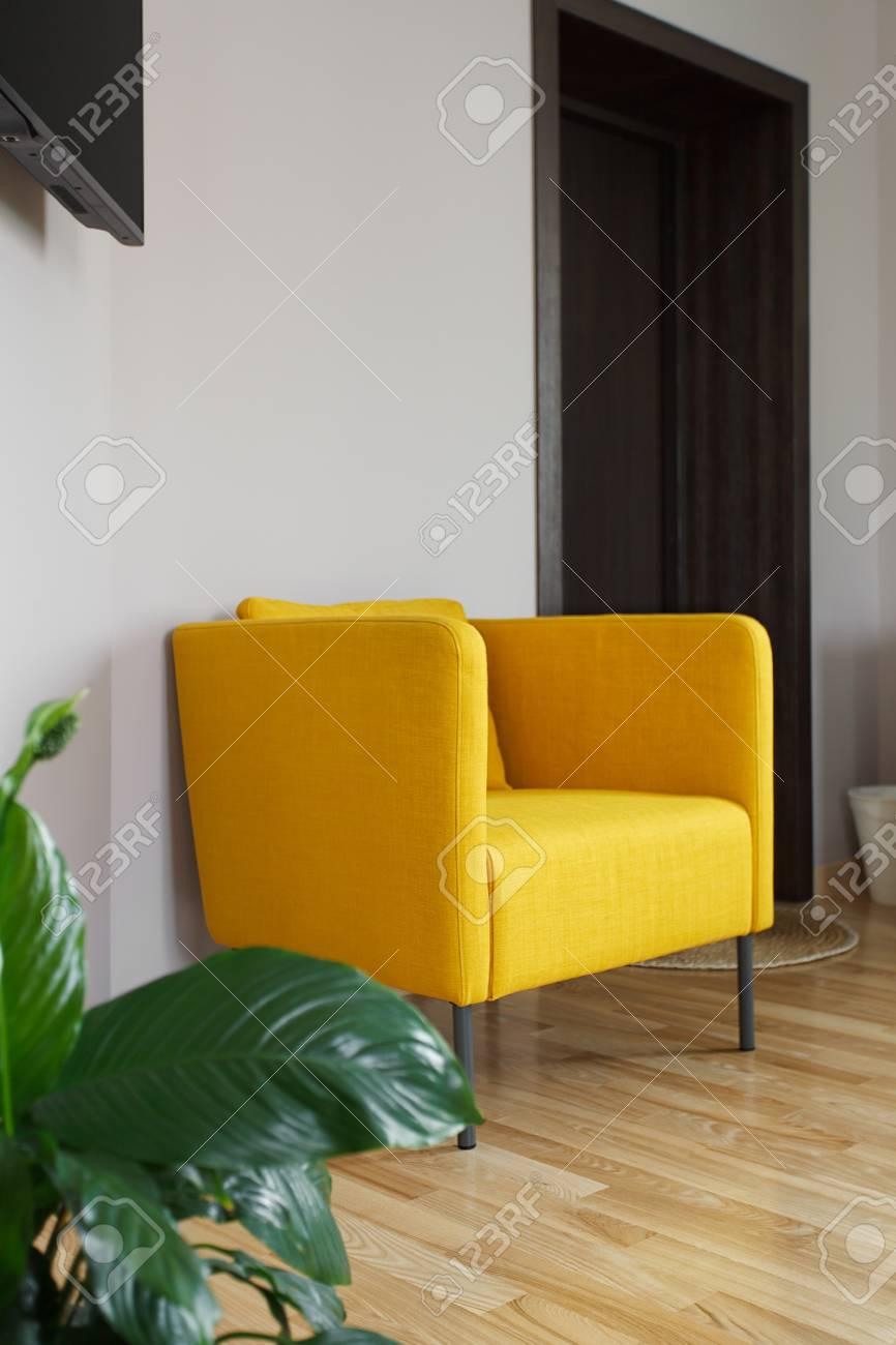 Großer Gelber Sessel In Der Nähe Weiße Wand Elemente Der