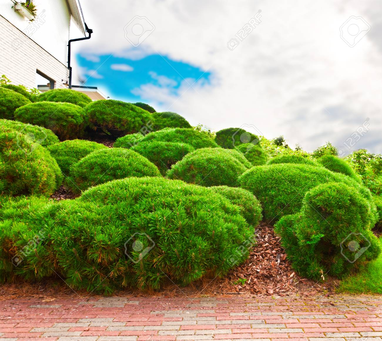 Haouse Wall And Green Garden On A Hill With Sky