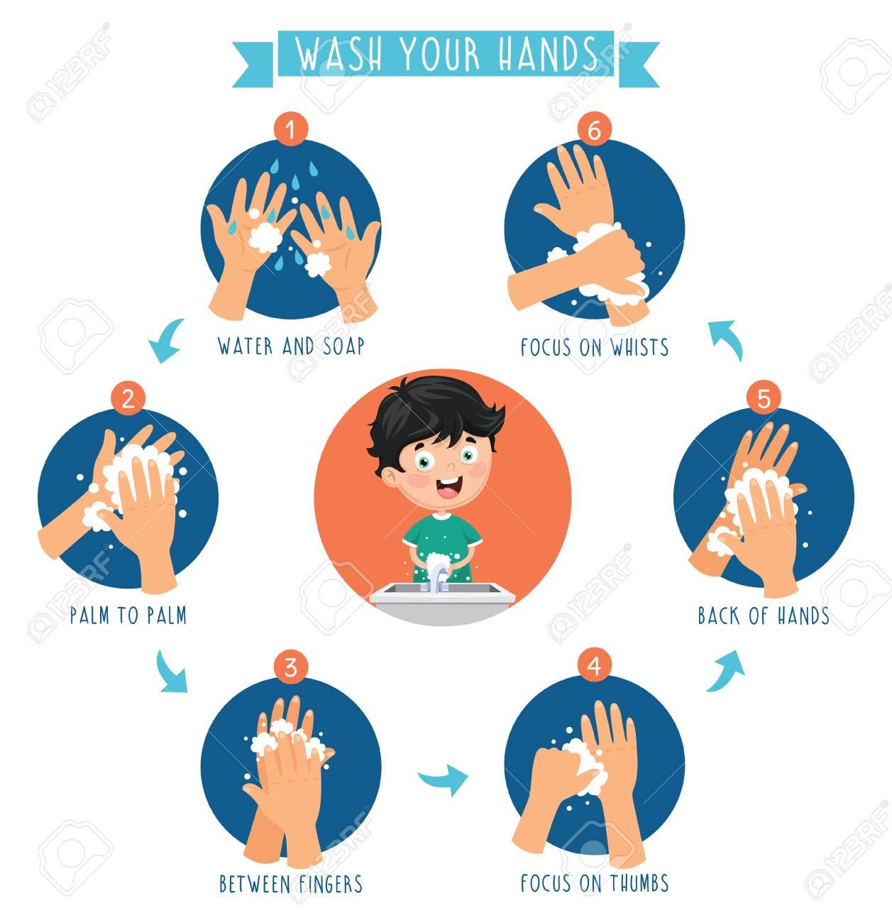 Vector Illustration Of Washing Hands - 104078052