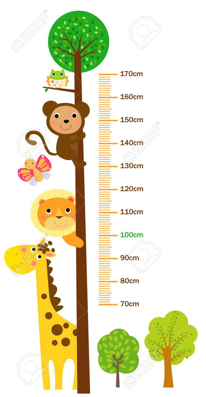 The child's height illustrations - 61208208