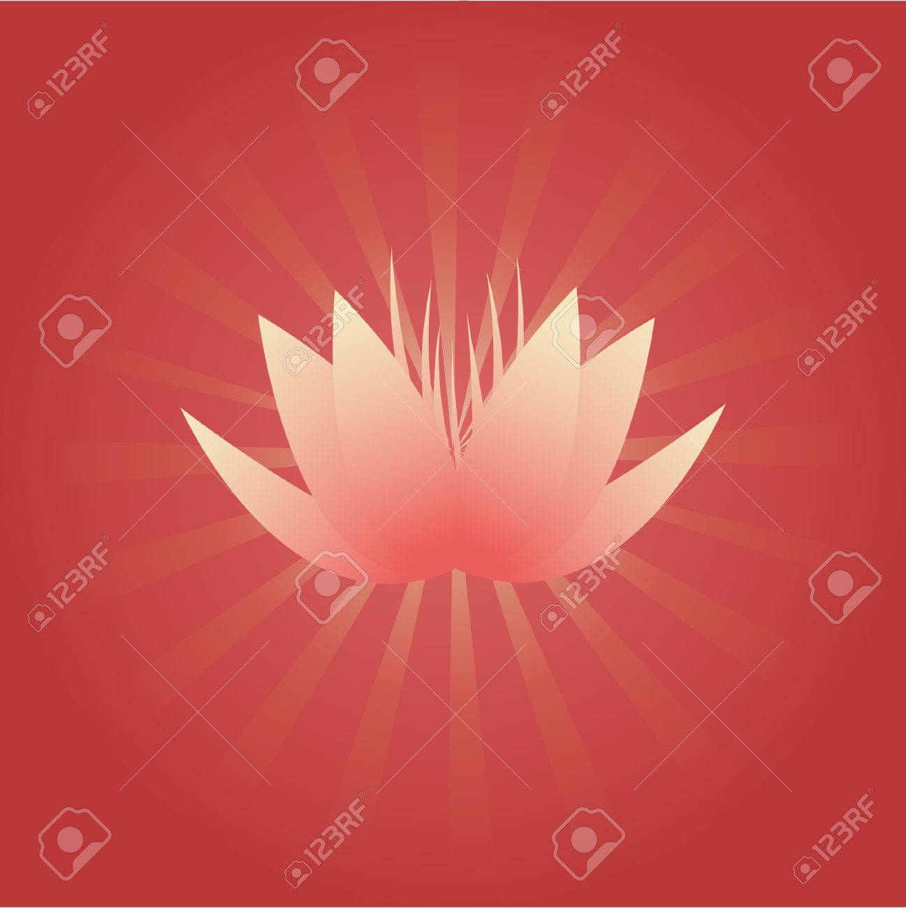 Pink lotus flower on red background with radial beams Stock Vector - 8399300