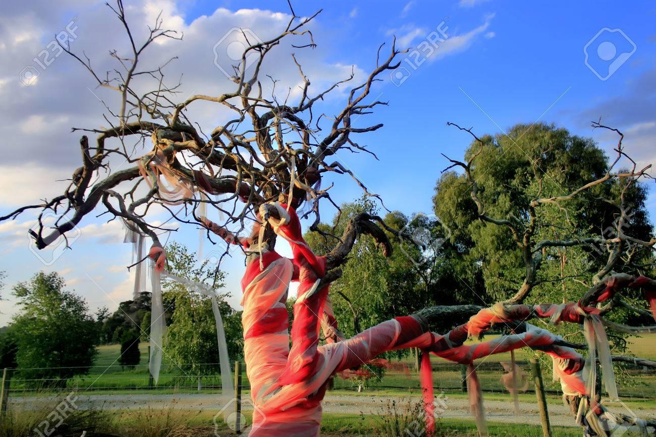 Fabric Installation Art Tree Blue Sky Monochromatic Color Red Stock Photo