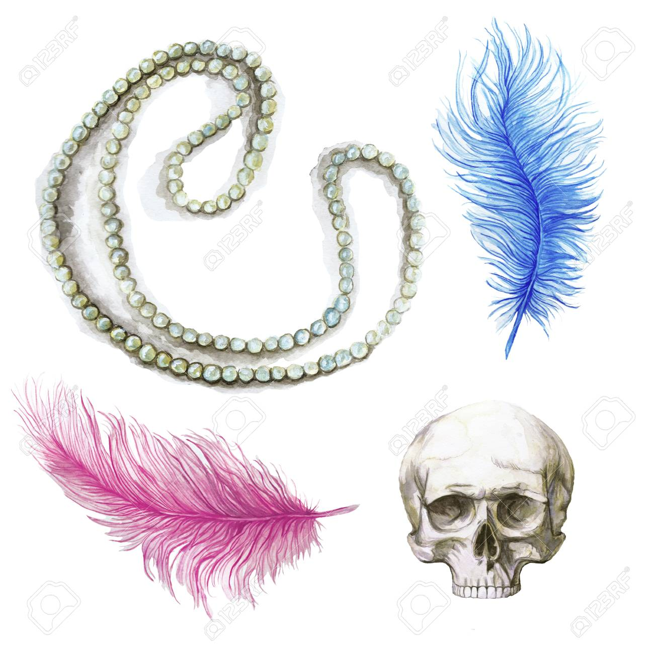 Dessin Aquarelle Plumes Plume Bleue Plume Rose Crâne Humain Pour Halloween Dessin Composite Plumes D Autruche Sur Fond Blanc Pour Les