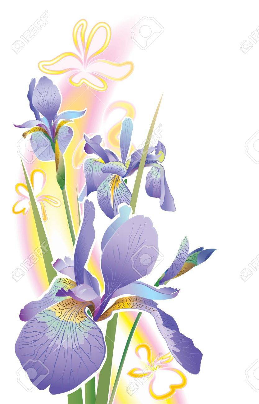 Drawing of a flower on a white background Stock Vector - 15626855