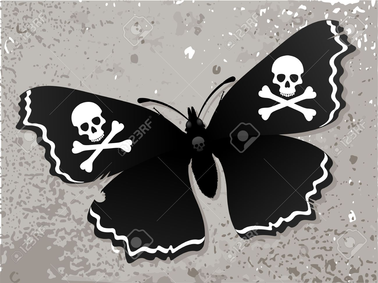 Black Butterfly Dark butterfly on the old wall Butterfly with