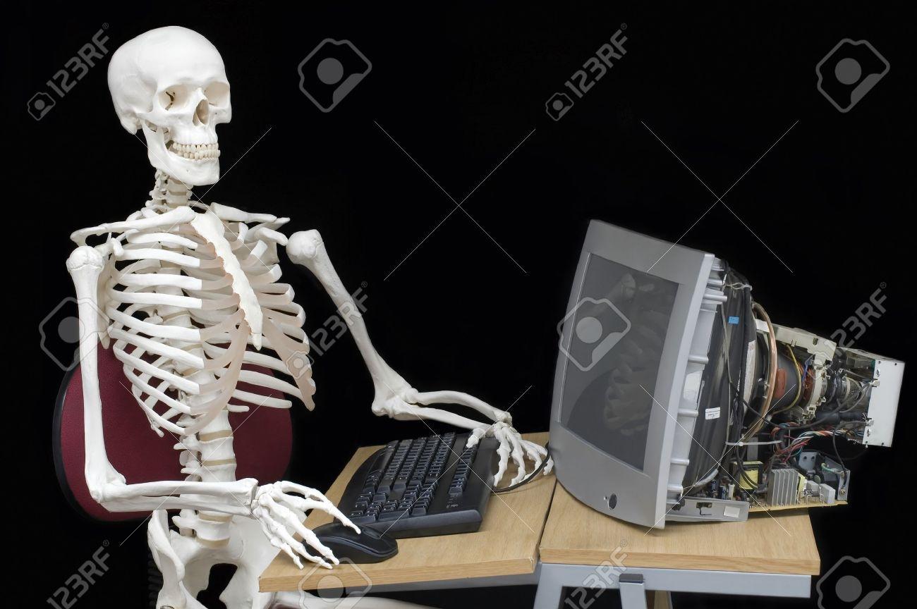 Skeleton staff Stock Photo - 9694810