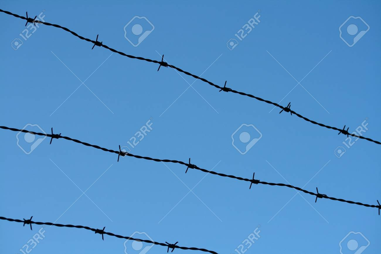 barbwire Stock Photo - 4145229