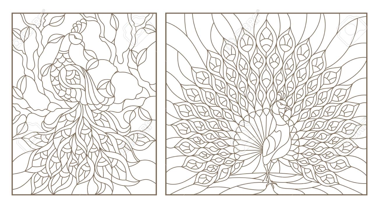 Set of outline illustrations stained glass Windows with peacocks, dark outlines on white background - 97576041