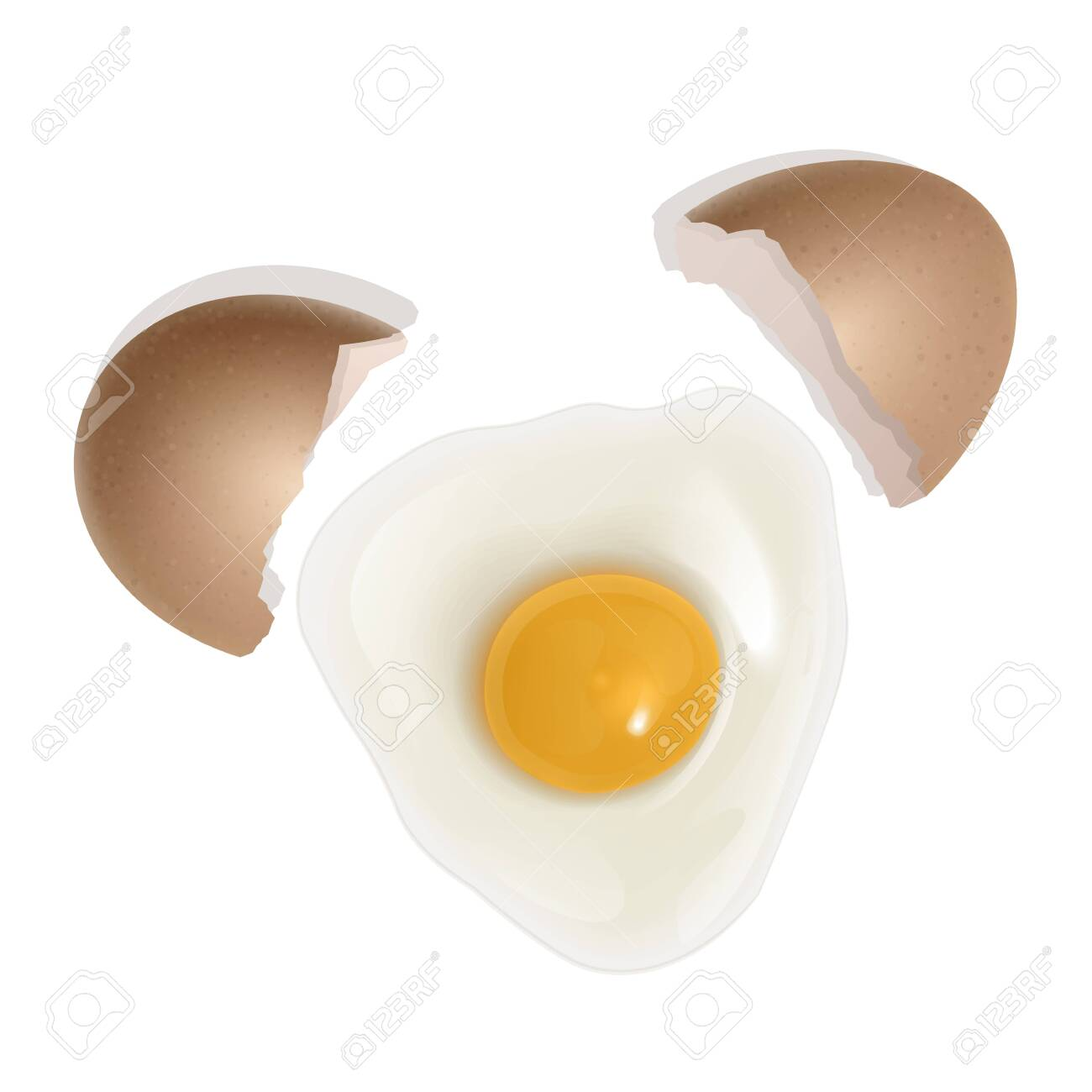 The raw chicken egg, broken egg. Healthy food for breakfast. natural protein and yolk. Vector illustration in realistic style, isolated on white background. - 135607640