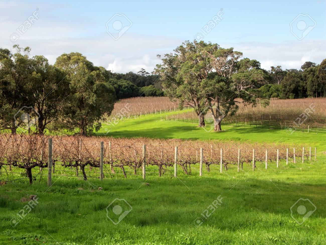 fattoria che risale Australia risalente allepoca vittoriana