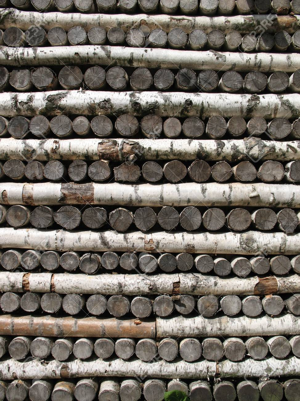 Stack of birch firewood Stock Photo - 5588822