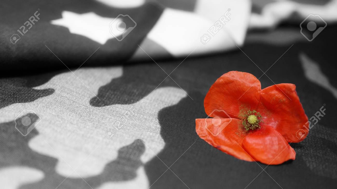 Memorial day poppy flower on black and white mimetic background memorial day poppy flower on black and white mimetic background usa flag stock photo mightylinksfo
