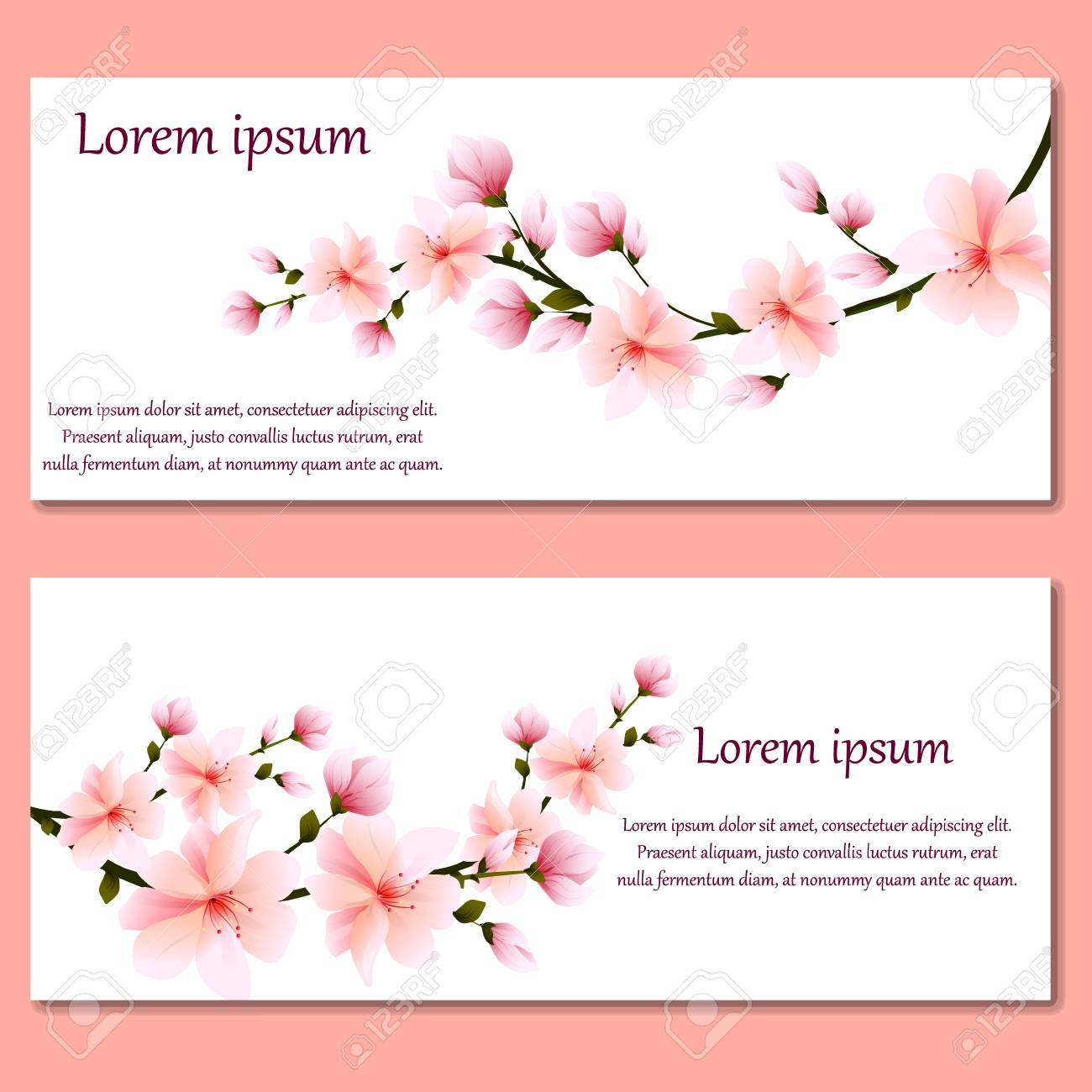 Set Of Cards Or Invitations With Gentle Pink Spring Flowers Sakura