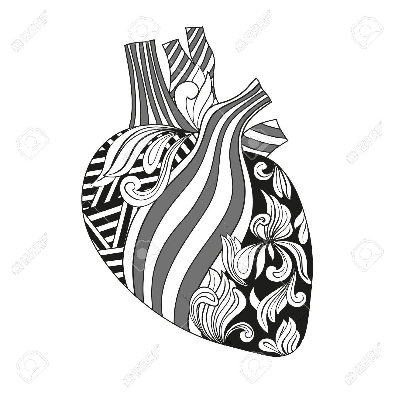 Coloriage Coeur Motif.Illustration Coloriage Coeur Avec Des Veines Et Des Arteres De Style Avec Des Motifs Geometriques Et Floraux