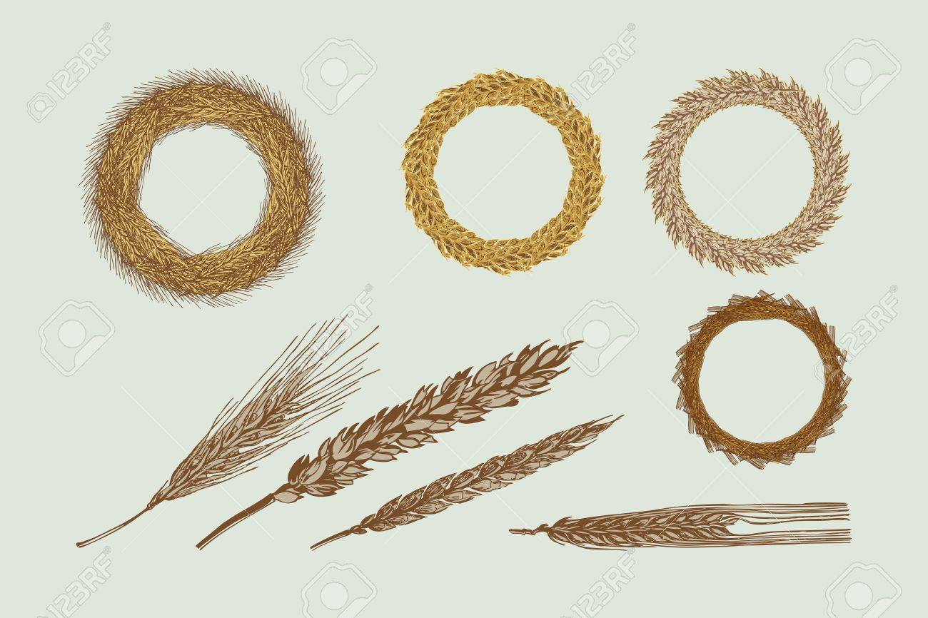 Four Harvest Wreaths Illustration Stock Vector - 14100421