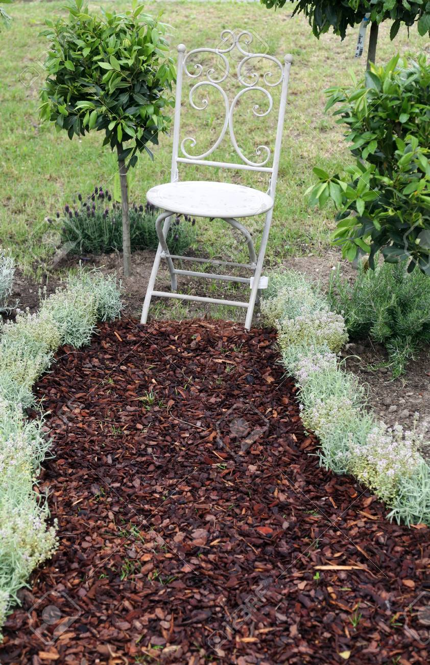 Weißer Stuhl Im Garten Lizenzfreie Fotos Bilder Und Stock