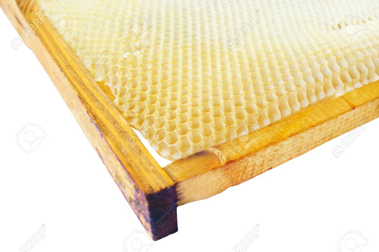 Beer honey in honeycombs on white background Stock Photo - 16508752