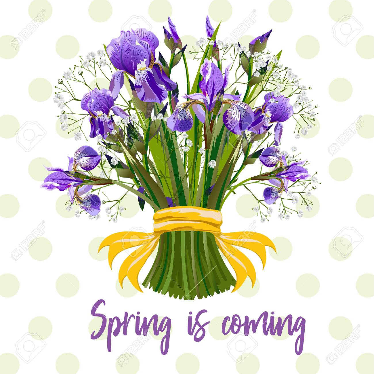 Bouquet Of Spring Flowers Vector Illustration Royalty Free Cliparts