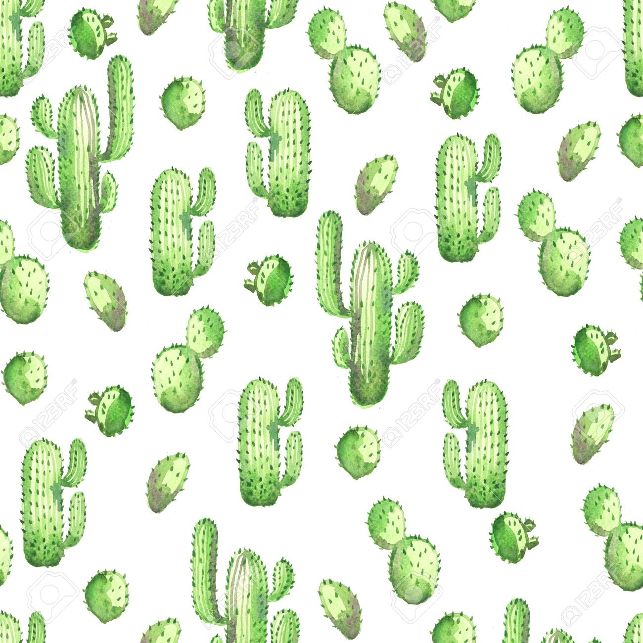 Watercolor Seamless Opuntia Cactus Pattern Background Stock Photo Picture And Royalty Free Image Image 104452713