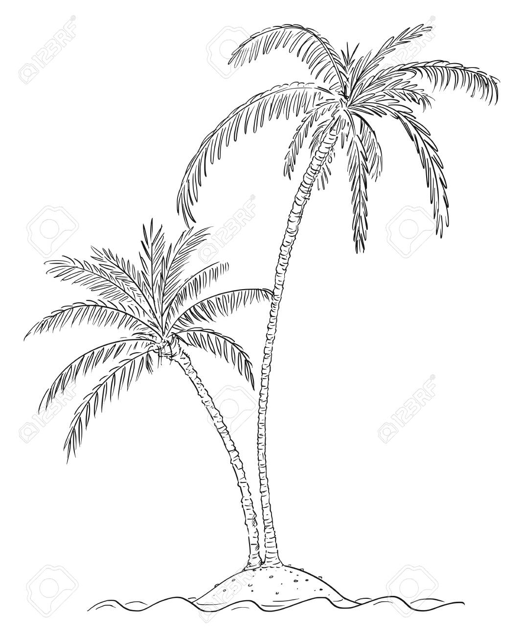 Vector Cartoon Illustration Or Drawing Of Two Palm Trees Growing Royalty Free Cliparts Vectors And Stock Illustration Image 124819980