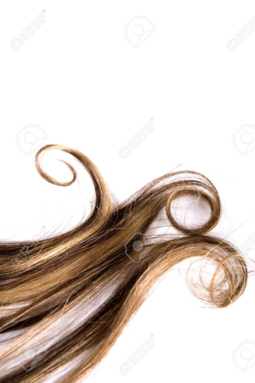 long brown hair style on white isolated background Stock Photo - 4683730