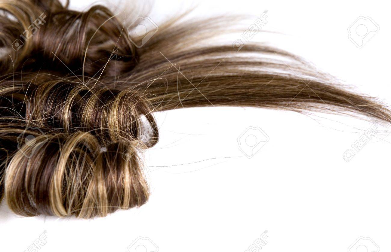long brown hair style on white isolated background Stock Photo - 5178385