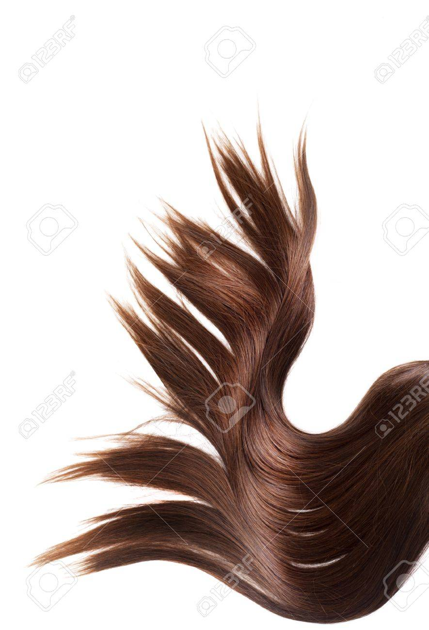 human brown hair on white isolated background Stock Photo - 12176968
