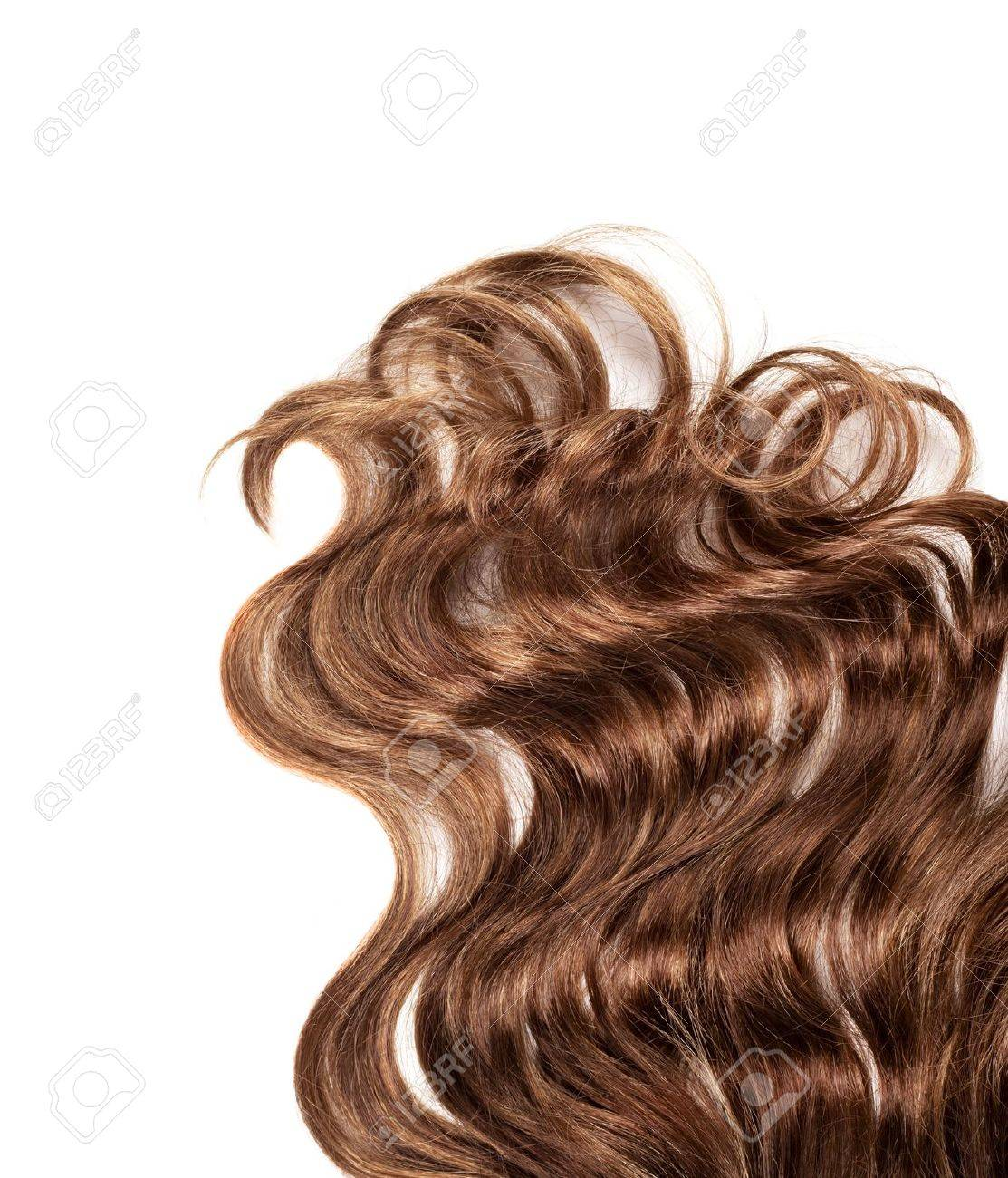 human brown hair on white isolated background Stock Photo - 12649029