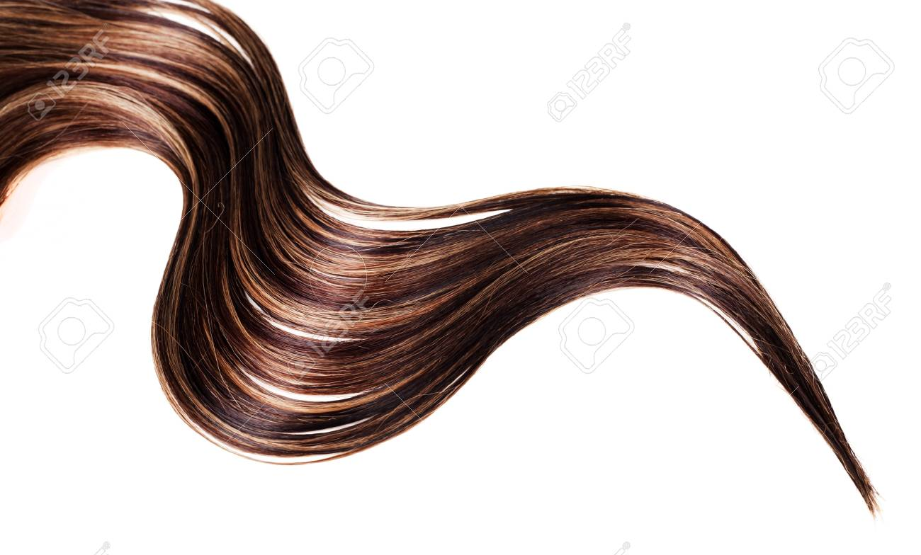 human brown hair on white isolated background Stock Photo - 17627525