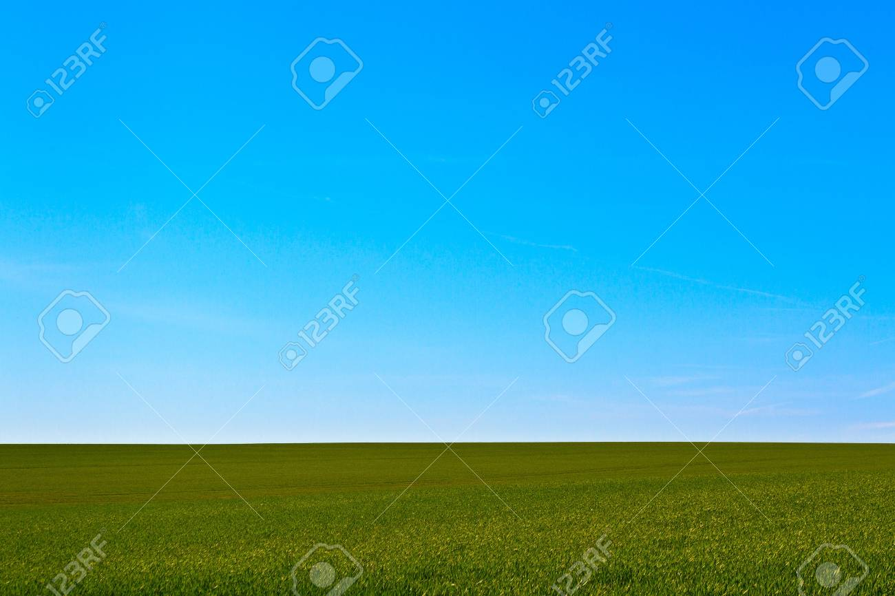 Green field and blue sky (background) Stock Photo - 13960043