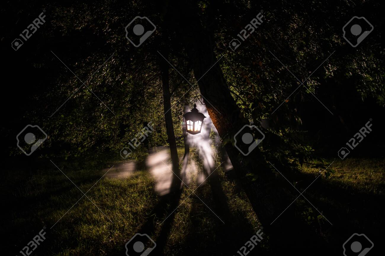 Horror Halloween concept. Burning old oil lamp in forest at night. Night scenery of a nightmare scene. Selective focus. - 129832816