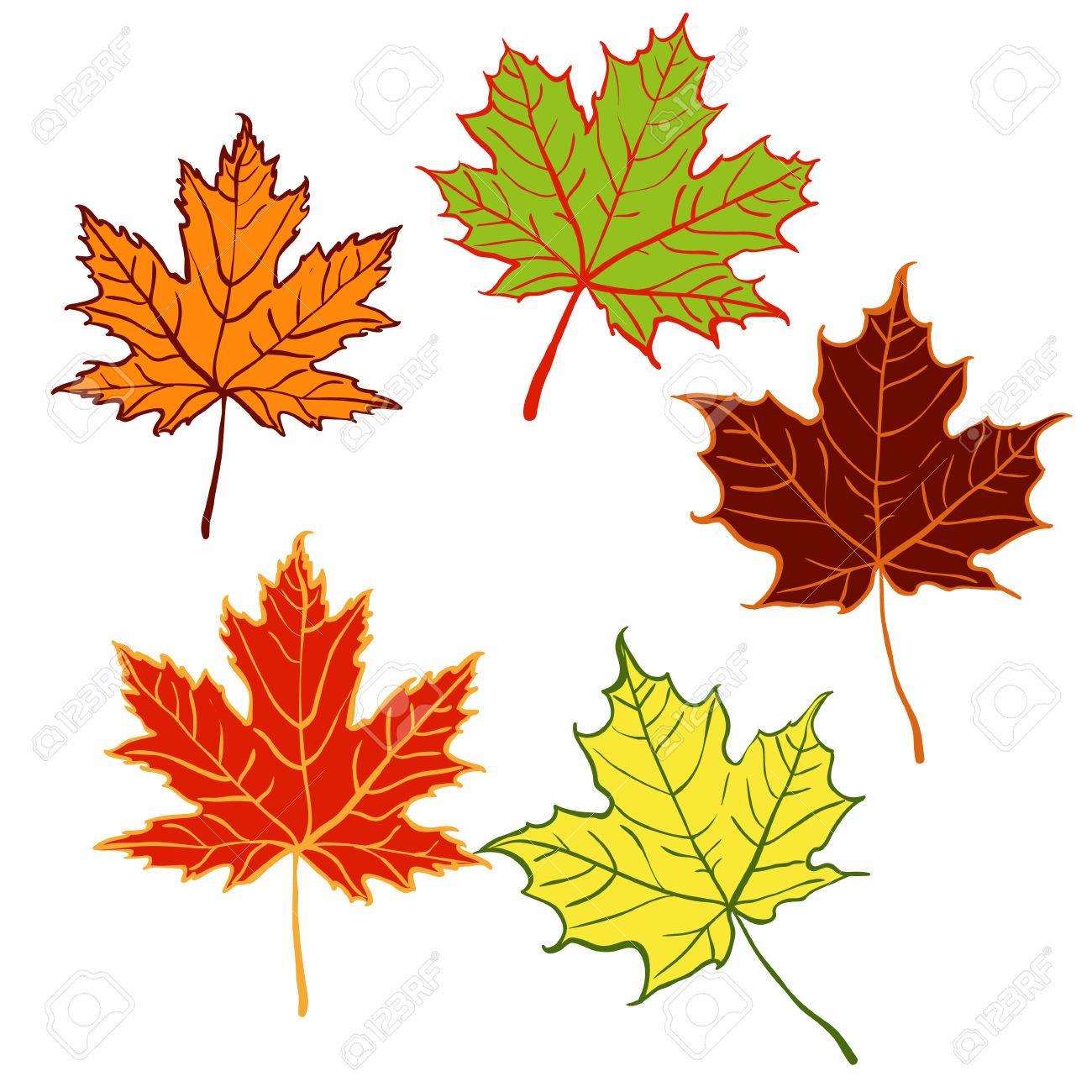 cartoon autumn leaf set of five maple leaves royalty free cliparts rh 123rf com cartoon leaves black and white cartoon leaves falling