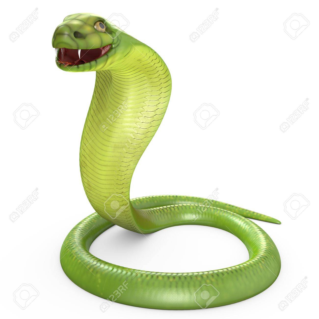 Green cobra bent in ring, isolated on white background Stock Photo - 15328881