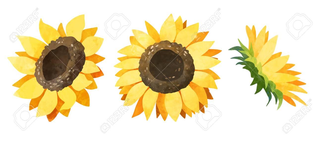 watercolor clip art Digital download Watercolor flowers clipart Sunflower clipart wedding Watercolor clipart Floral clipart fall clip art