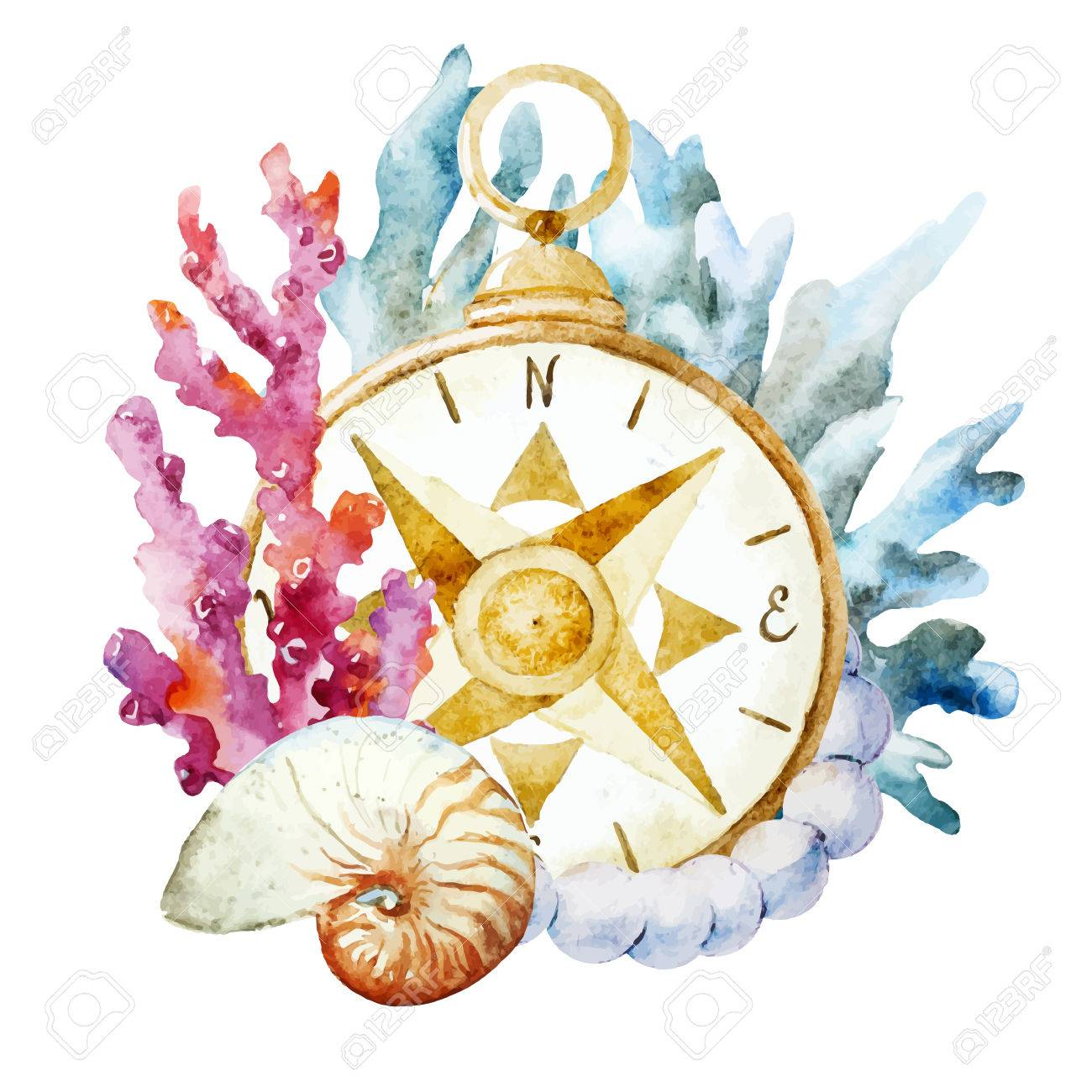 1f1bca2c4 Beautiful vector image with nice watercolor compass with corals Stock  Vector - 38814854