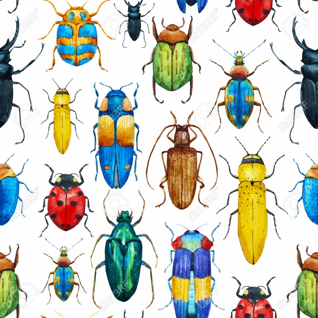 beautiful pattern with nice watercolor bugs royalty free cliparts