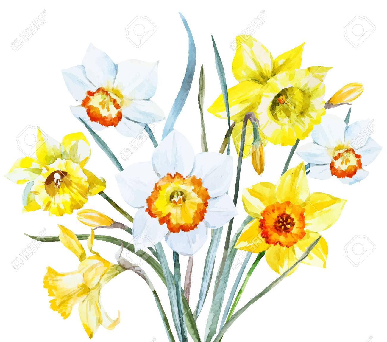 Beautiful Image With Nice Watercolor Spring Flowers Royalty Free