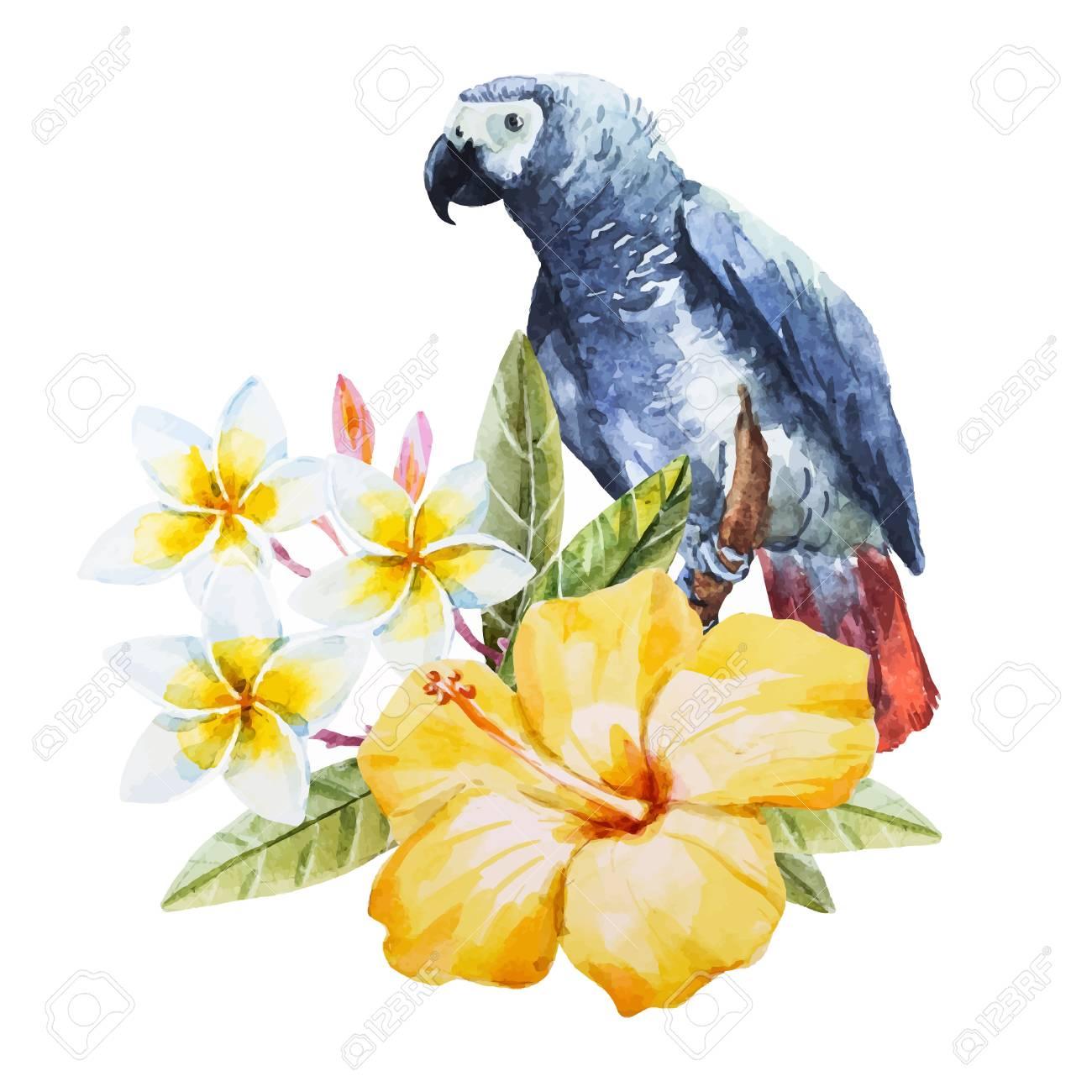 Beautiful image with nice watercolor hand drawn hibiscus flower with beautiful image with nice watercolor hand drawn hibiscus flower with parrot stok fotoraf 54604313 izmirmasajfo