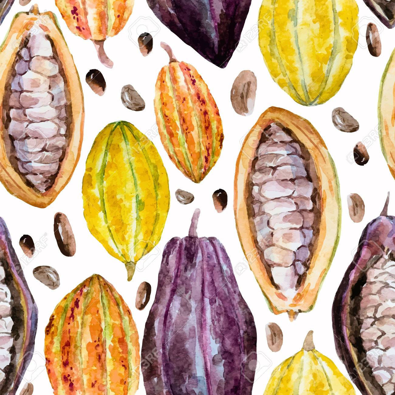 Beautiful pattern with nice hand drawn watercolor cocoa beans - 55163986