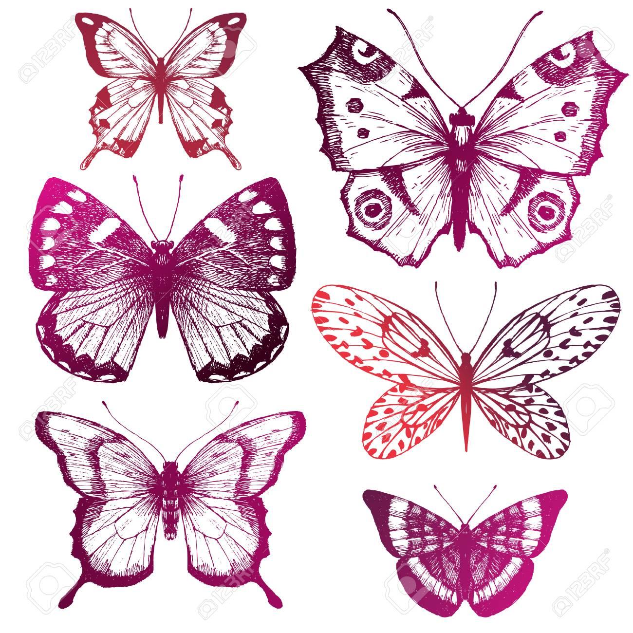 Beautiful image with six nice hand drawn butterflies - 55081846