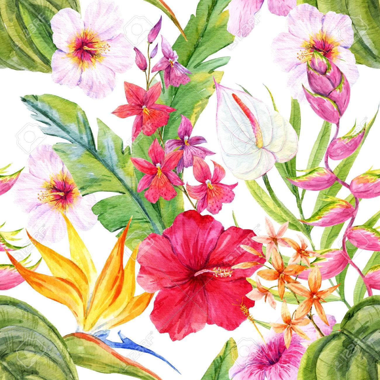 Banque d\u0027images , Beau motif avec la main aquarelle dessinée fleurs  tropicales et de feuilles