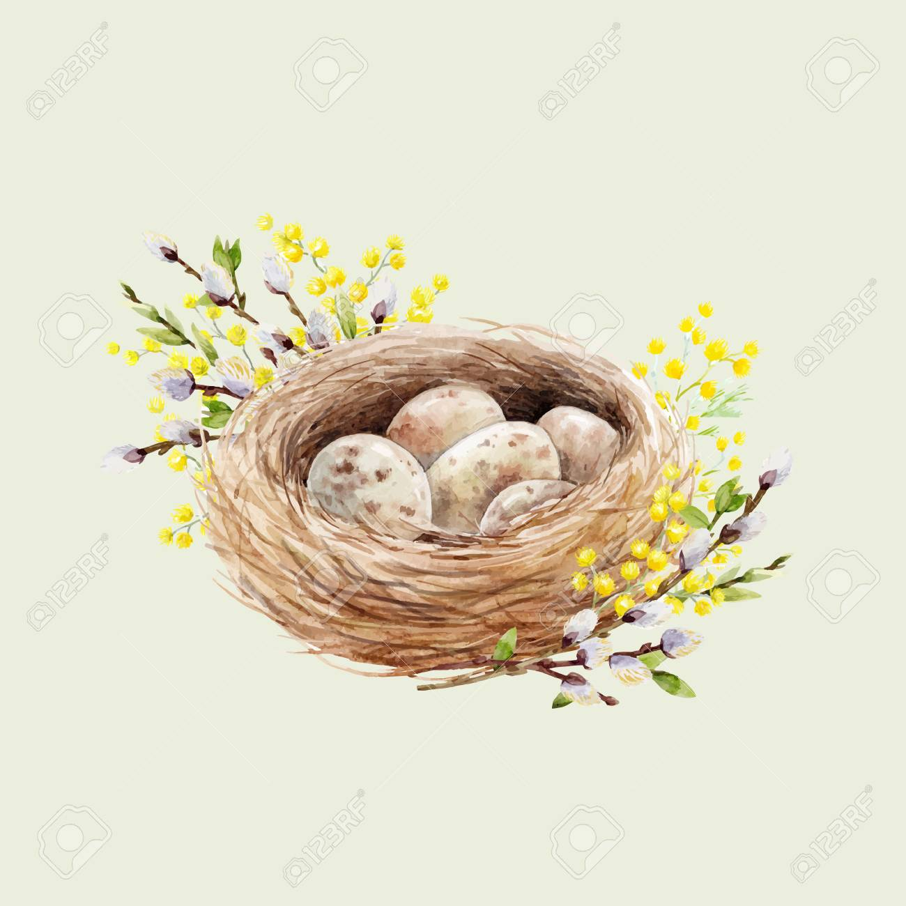 Watercolor bird nest with eggs Vector illustration. - 94038858
