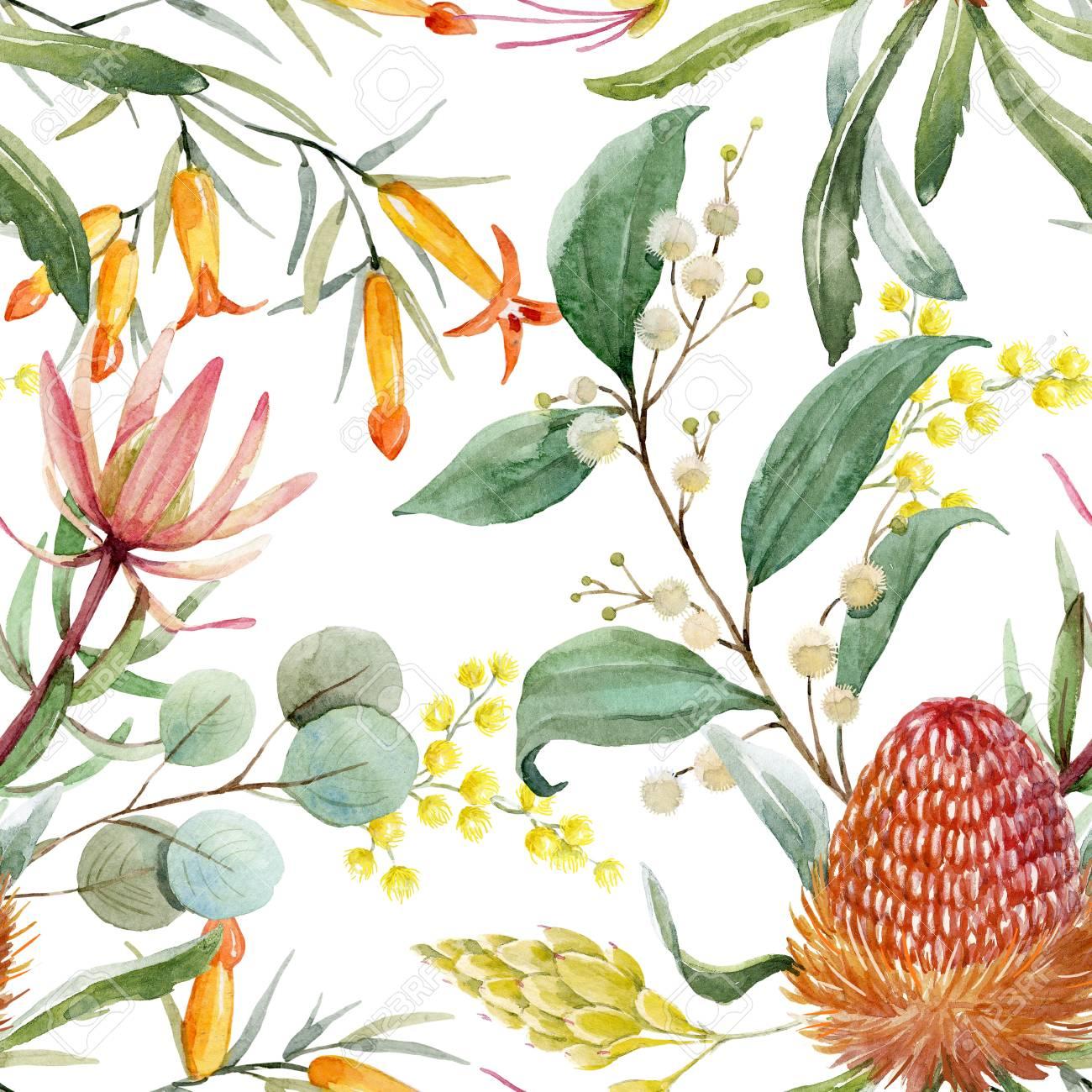 Watercolor australian banksia floral pattern - 100986676