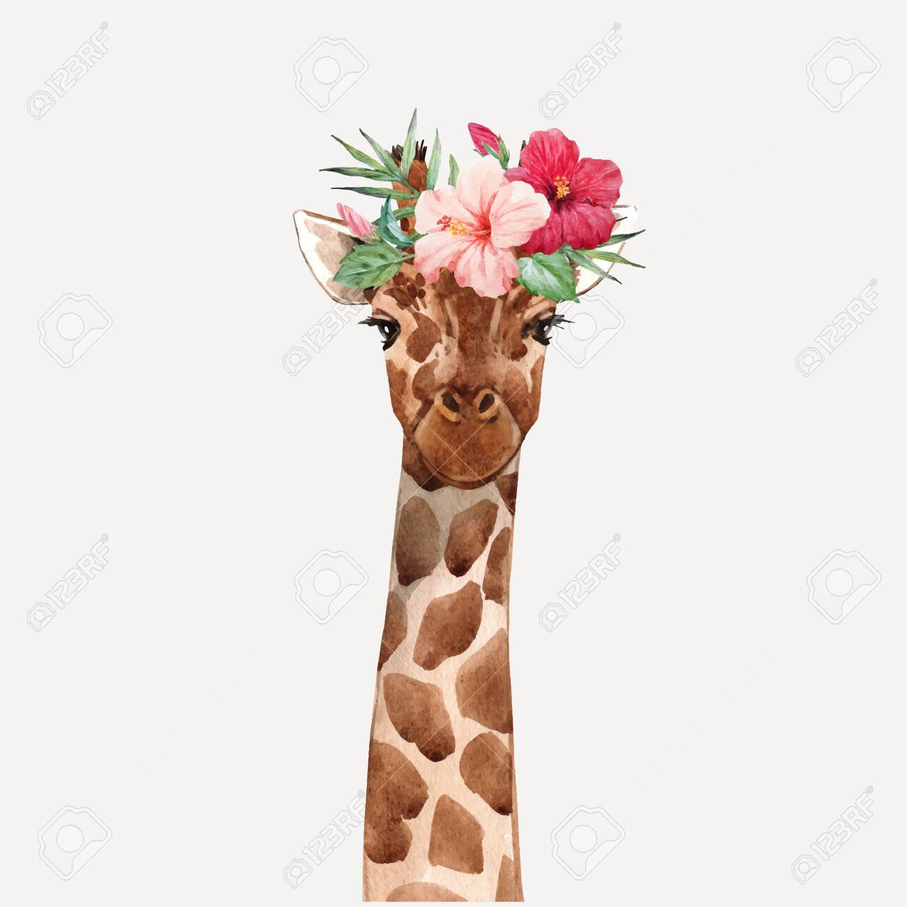 Beautiful watercolor hand drawn giraffe head vector portrait - 128172367