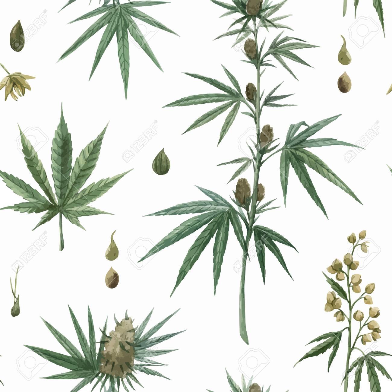 Beautiful vector watercolor medical marijuana seamless pattern. Natural therapeutic drug. - 134596336