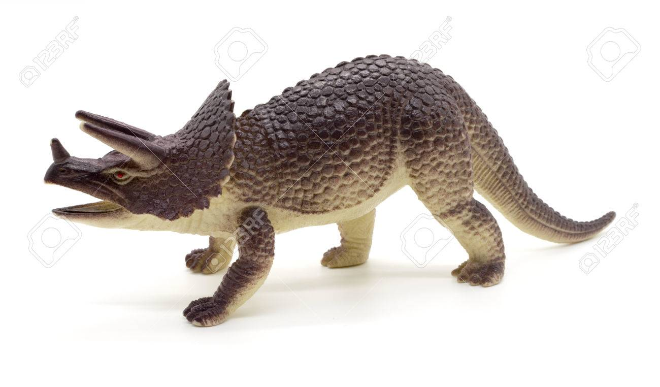 triceratops dinosaurs toy on white background stock photo picture