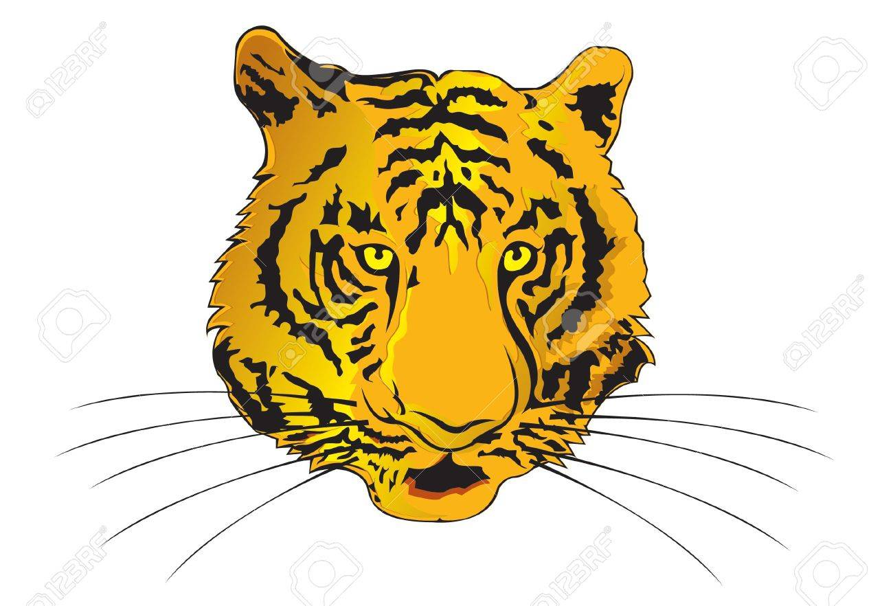 Tiger Illustration Stock Vector - 3087555