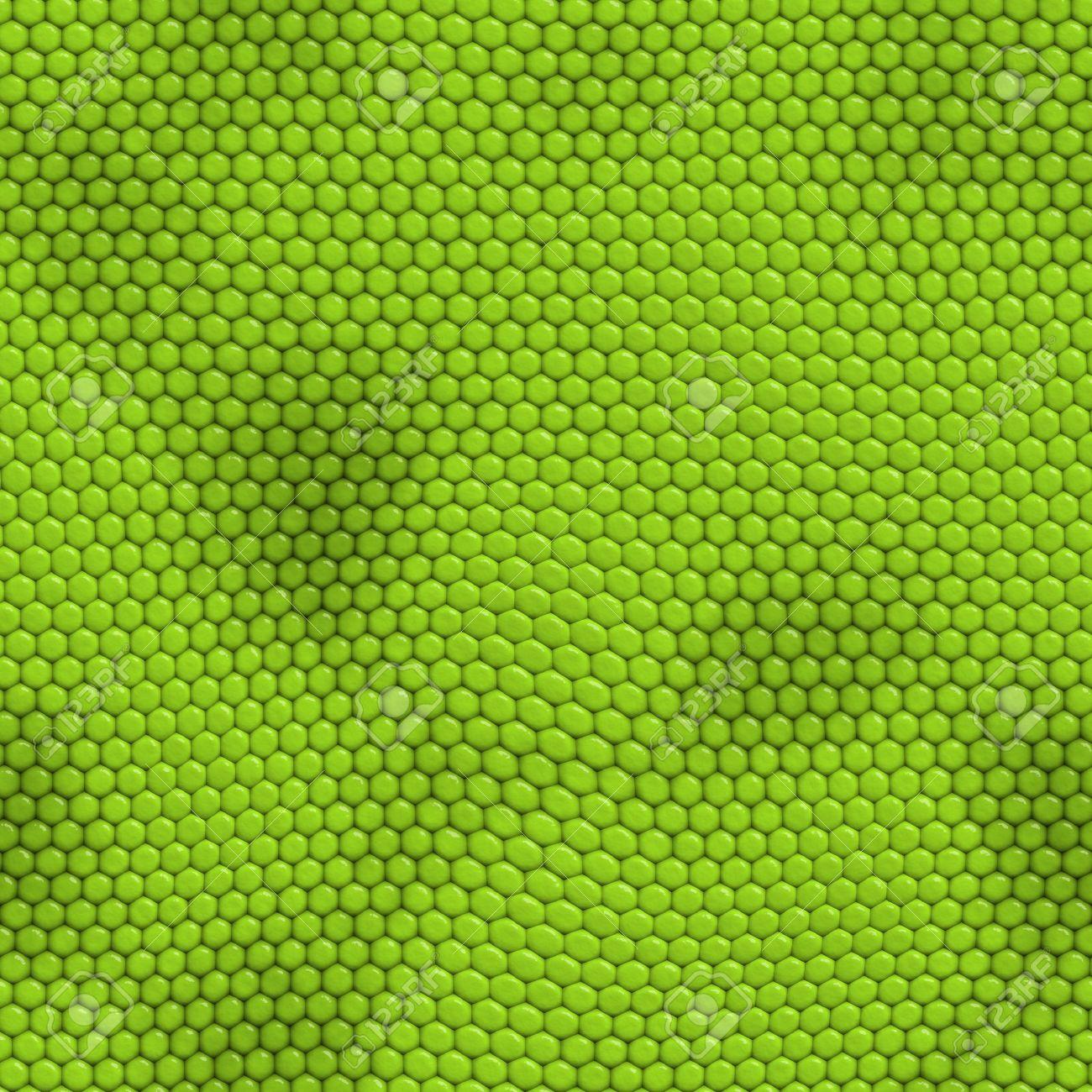 Seamless Iguana Skin Background Stock Photo - 3323407
